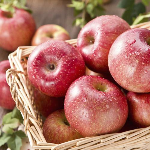 [햇살담은] 단단하고 달콤한 사과 3.5kg/14~18과