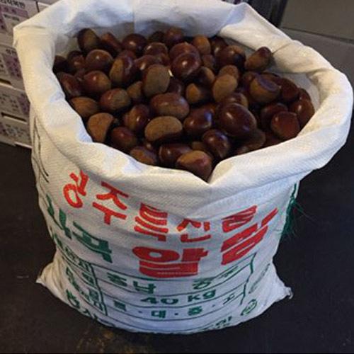 [고맛나루] 토실토실 공주 알밤 1kg(왕왕)/50알내외