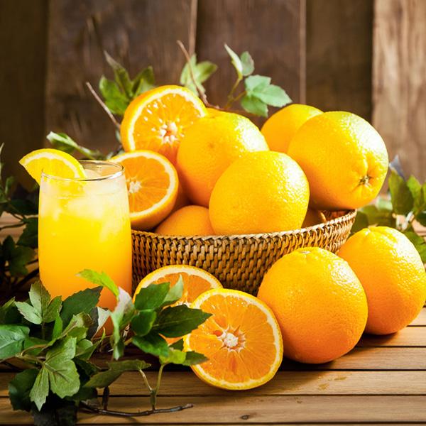 [THE fruit] 상큼새콤한 네이블 오렌지 4kg/14과내외(특)